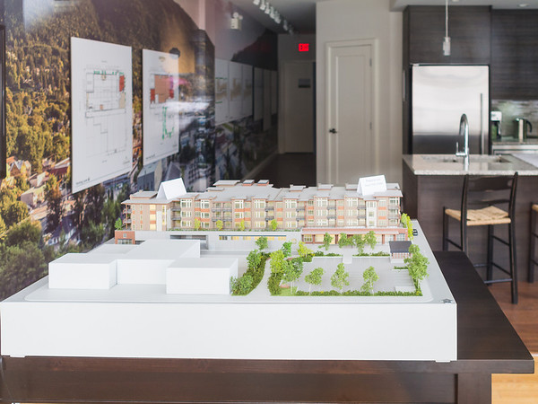 This is the model of the Nelson Commons development that the now owner of Wings Grocery built.