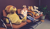 """""""Long lineup at the dentist office today. Who's up next?""""<br /> <br /> """"I think the hippo."""""""