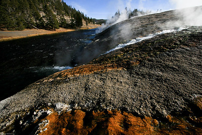 Runoff from springs channeling into Firehole River.