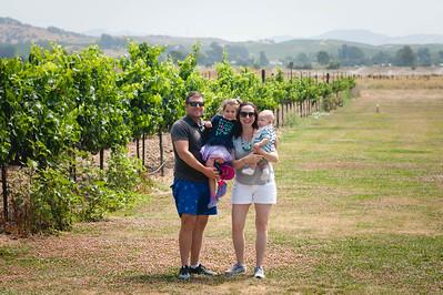 Vineyard 07-22-18