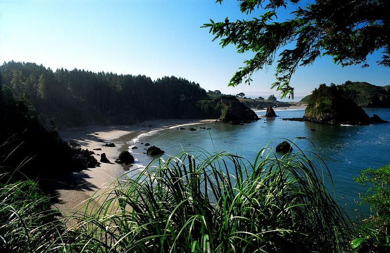 College Cove, Trinidad, California