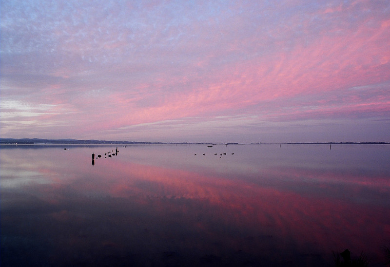 Dawn, Humboldt Bay