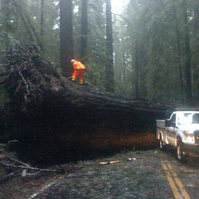 Humboldt County storm damage