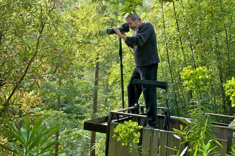 """Shooting from the temporary platform about 8' away from the 2""""-diameter nest.  I was out there 3-6 hours a day during the 21-day process."""