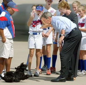 President Bush, along with first lady, Laura Bush, and members of the Waco Midway Little League Softball World Series championship team, react as Bush accidentally drops his dog, Barney, Saturday, Aug. 30, 2003, at TSTC Airfield in Waco, Texas. Bush quickly scooped up the dog who was not injured. (AP Photo/Duane A. Laverty)