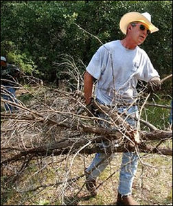 bush-clearing-brush