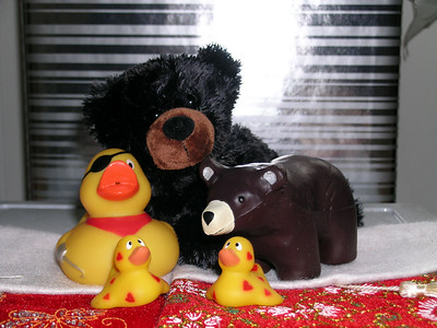So now Freddie and Ko have three more friends, The big black bear is Miss Eulalia bear all the way from Missouri, and the twin love ducks are Patrick and Donna all the way from Edmonton Canada.  They arrived just in time to bring in the new year with Freddie and Ko.