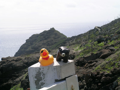 On Sunday the boys came along on a hike up to Makapu'u point to see the lighthouse and the gorgeous view of the windward side of the island.