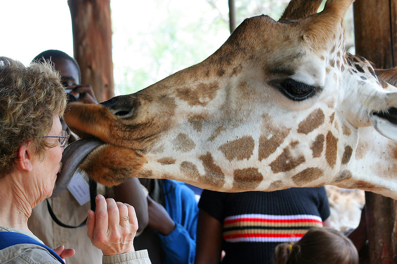 YUCKY!!!!!!!!!!!!!!!!!!!!!!!!!!!!!!!!<br /> What people do on vacation, tongues and giraffes shouldn't mix