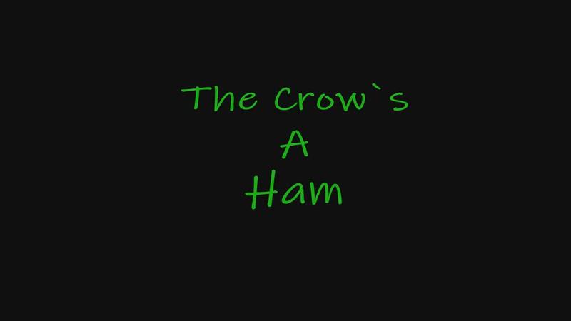Ham, the Crow