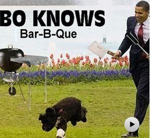 Obama_dog