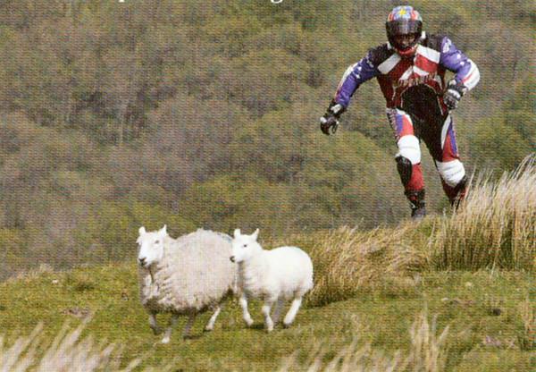Bah_Superbiker