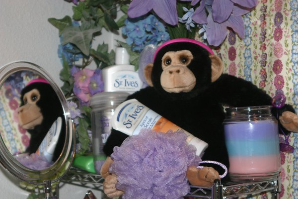 """I don't know what you guys are talking about this """"mangy monkey""""!  I think he's just wonderful and he didn't cause ANY problems!  I only wish I could keep him longer..."""