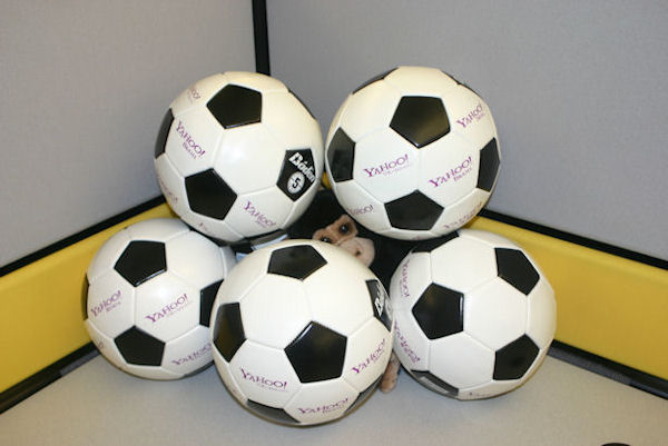 Soccer!  (And monkeys make bad goalies!)