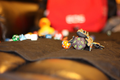 Lizards, Ducks, and Dice, oh my