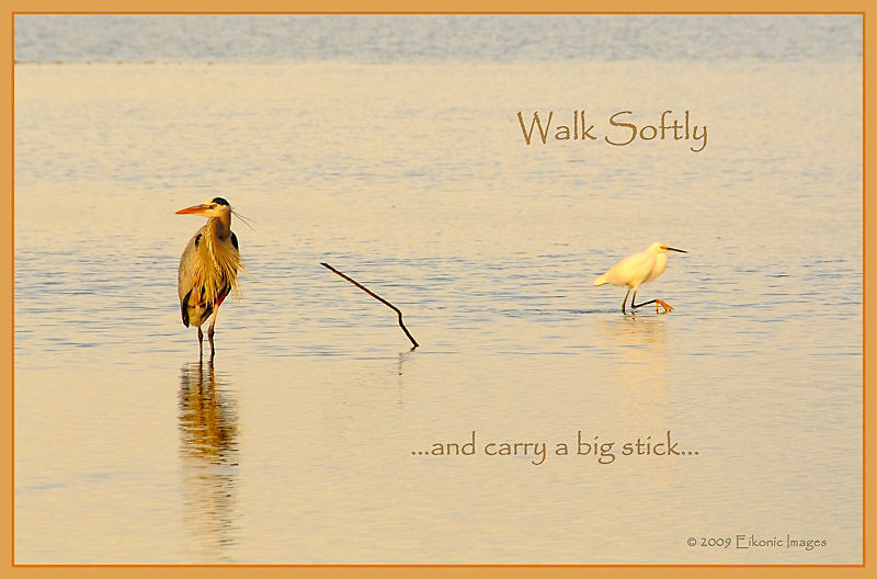 Walk softly and carry a big stick