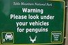 Look Under Vehicles for Penguins