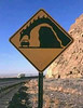 Dragon Warning Sign - Sent in By John Klein Photography