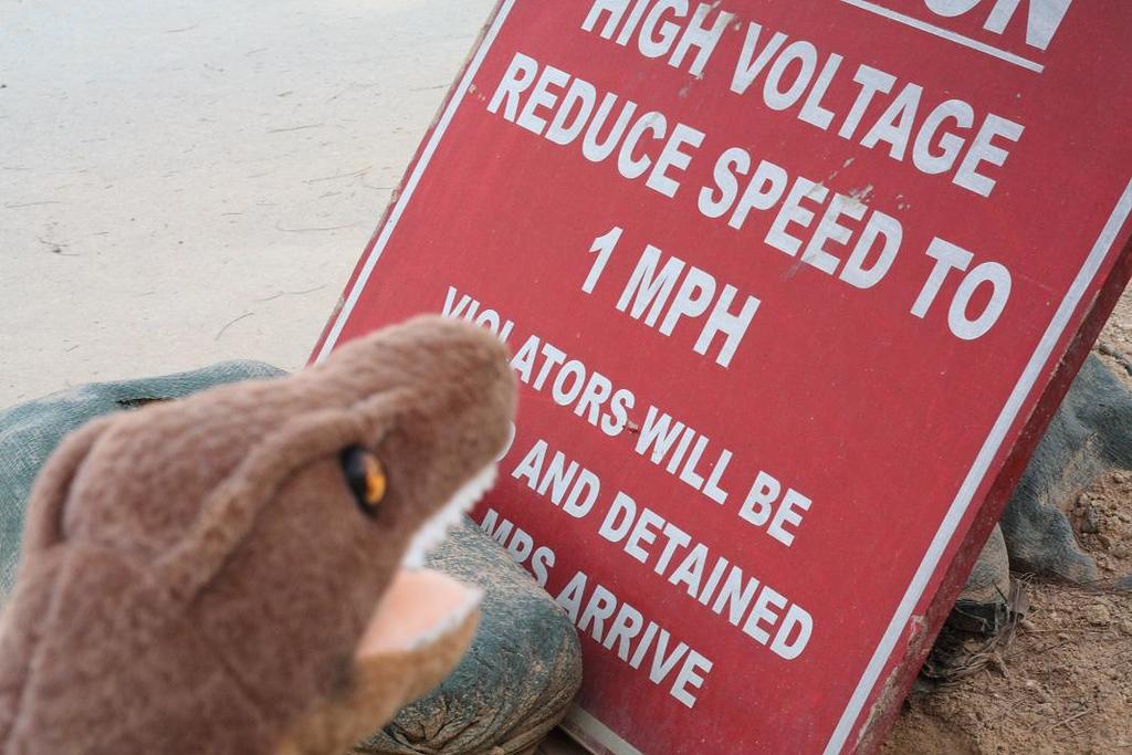 1 MPH.  F*$@ that, I'm a raptor.