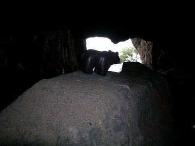 Fred is just wondering if there are bats in this cave?