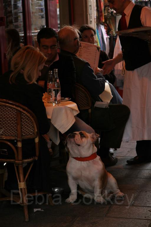 Dining Out, Paris, France