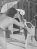 My dog Tuffy. 105 lb Giant Pit Bull. 17 yo old me  summer 1979.