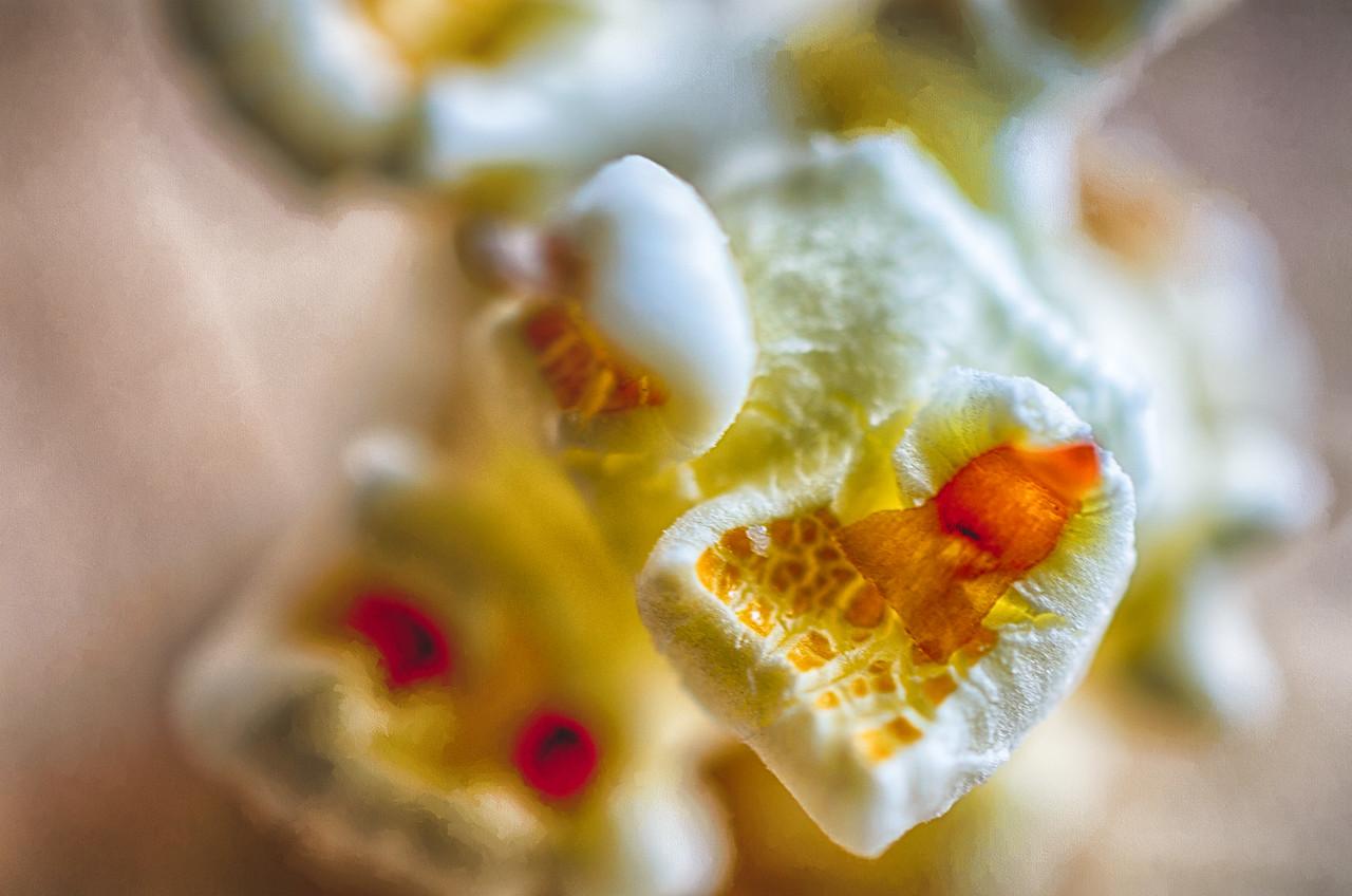 popcorn by Martin Heller
