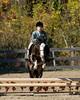PonyHunterdsc_0415