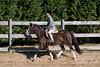 PonyHunterdsc_0426
