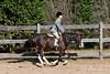 PonyHunterdsc_0443