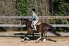 PonyHunterdsc_0432