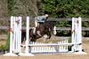 PonyHunterdsc_0412