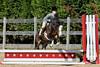 PonyHunterdsc_0411