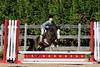 PonyHunterdsc_0420