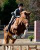 HorseHunter26dsc_0734