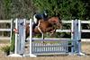 HorseHunter26dsc_0725