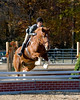 HorseHunter26dsc_0731