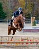 HorseHunter26dsc_0736