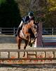 HorseHunter26dsc_0726