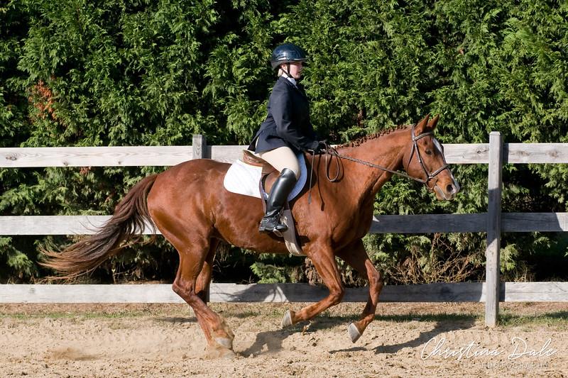 HorseHunter26dsc_0762