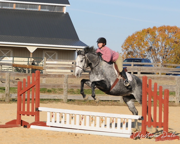 Holly Point Equestrian Center