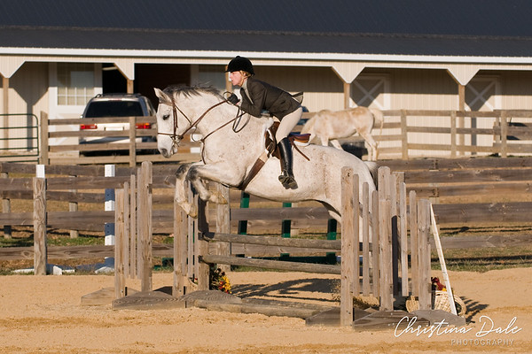 Schooling and Working Hunter 2'6