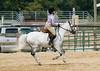 PonyDSC_0179