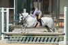 PonyDSC_0194