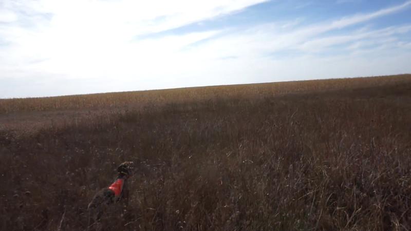 South Dakota 2014