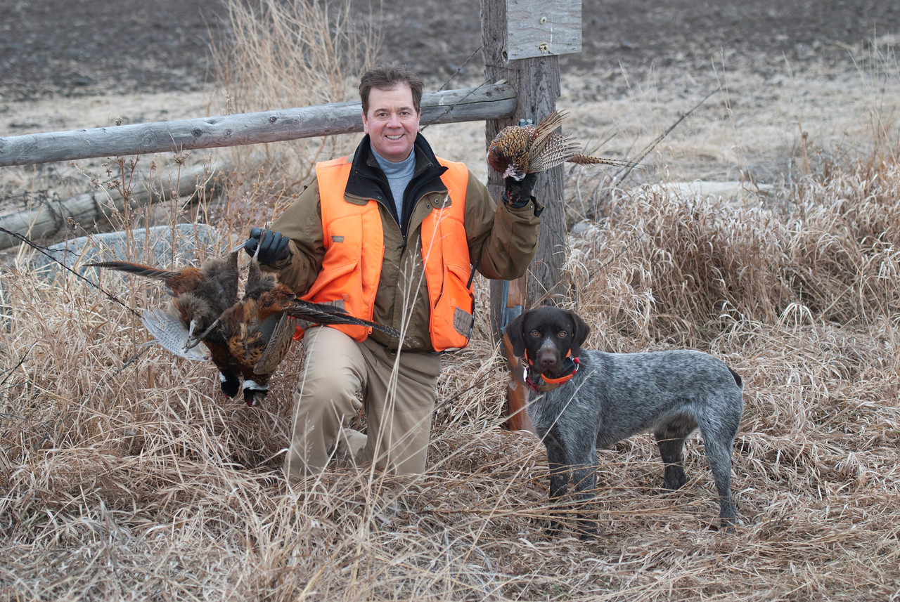 Kurt Eickhoff with Friedrich and limit of South Dakota pheasants.