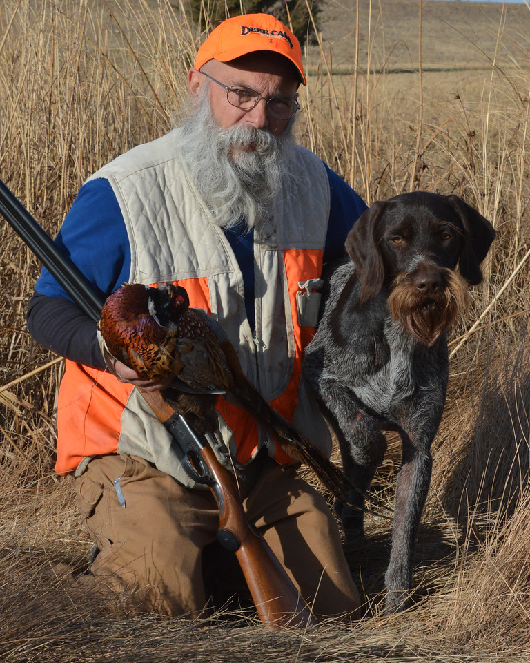 Hunting with  Bohemian Wire-haired Pointing Griffons (Cesky Fouseks)