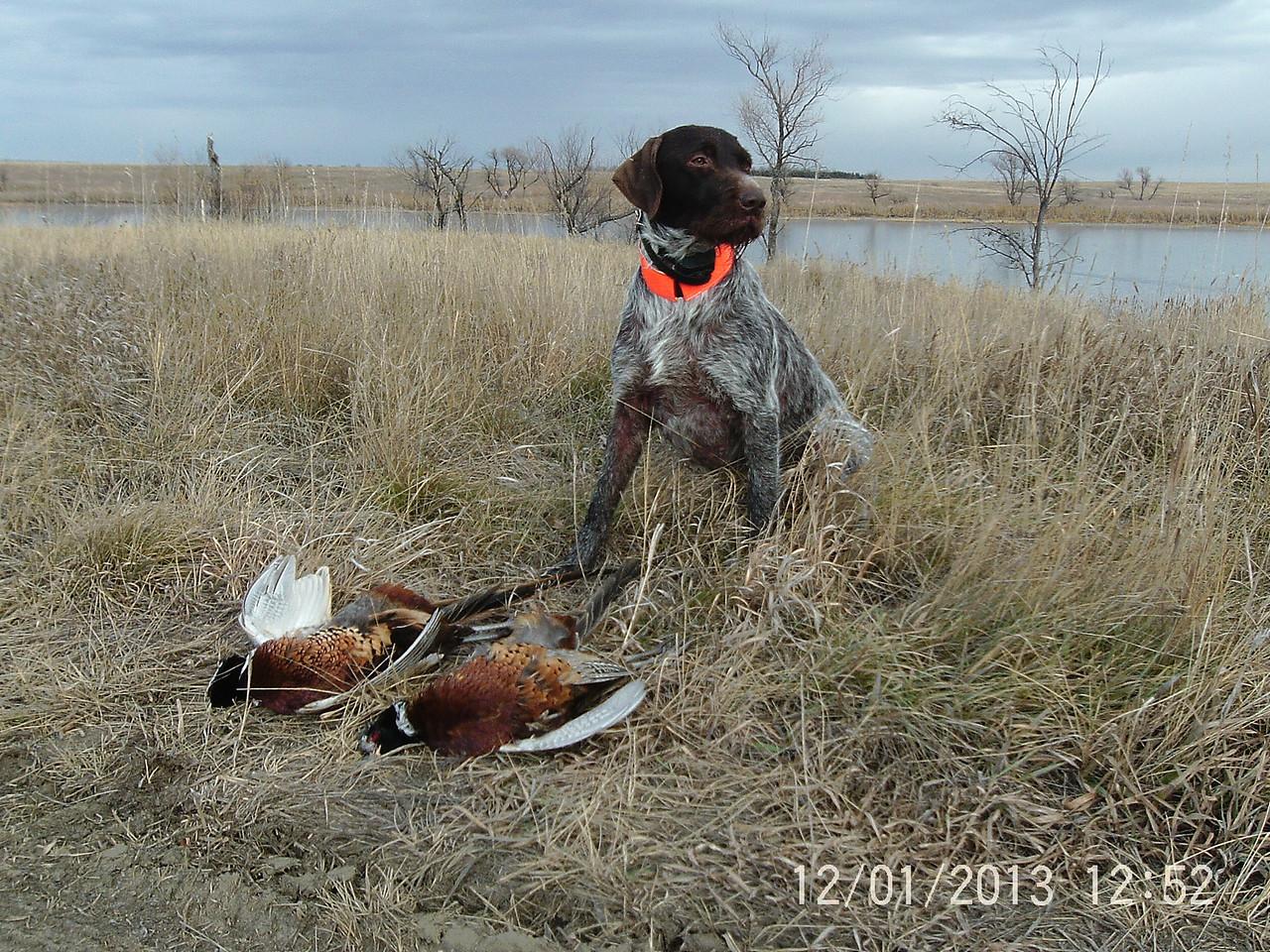 Successful morning in South Dakota