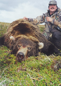This is a close up of a previous Brown Bear taken by a Spanish hunter. My apologies for not being able to recall the name. It was an exceptional bear taken in the fall of the year on the Alaskan peninsula near Bear Lake Lodge. Hunts are offered exclusively through Anderson Taxidermy & Guide Service, Inc. Contact Don Anderson to inquire about booking your hunt for the new year ahead. www.thehuntpro.com