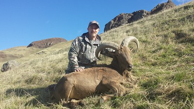 2016 Aoudad Sheep  Scott Woodfin